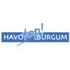 Logo HAVOtop